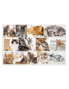 Подложка за бюро Herma, 55x35 cm, котки